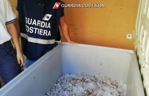 guardia-costiera-salerno-pesca-illegale